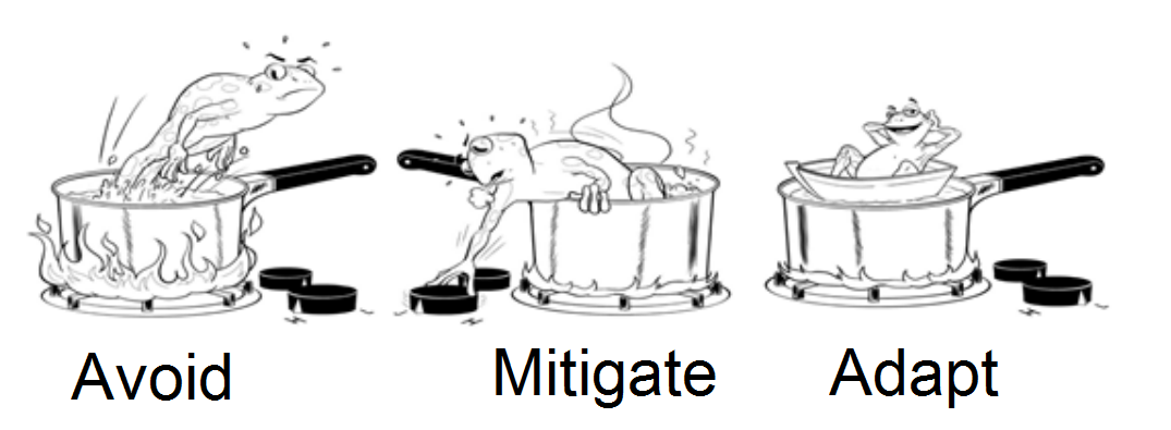 Frog in boiling water: Avoid - Mitigate - Adapt.